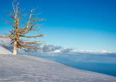 Escursioni Etna e Alcantara - Etna and Alcantara excursions - Ätna und Alcantara exkursionen